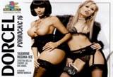 Pornochic 16 – porno film z roku 2008