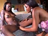 Černé lesbické krásky v akci