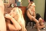 Sexuální orgie v soudní síni a pornohvězdy Abbey Brooks, Eva Angelina, Puma Swede a Rachel Starr.