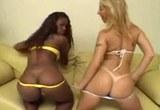Dva borci vyšukají dvě Brazilské krásky
